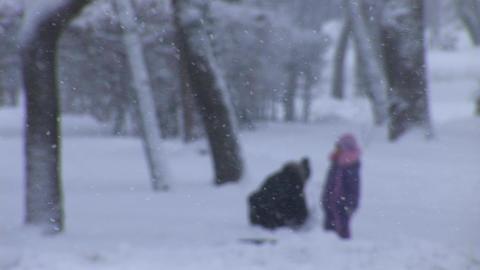 snow play 1 Stock Video Footage