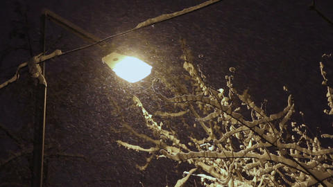 Overnight snowfall Stock Video Footage