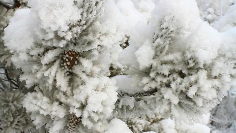 Winter scene 14 Stock Video Footage