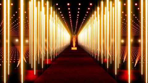 On The Red Carpet 14 Award Stock Video Footage