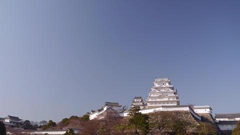 Himeji Temple 125 stock footage