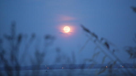 Big bright moon in a full moon in the night sky Footage