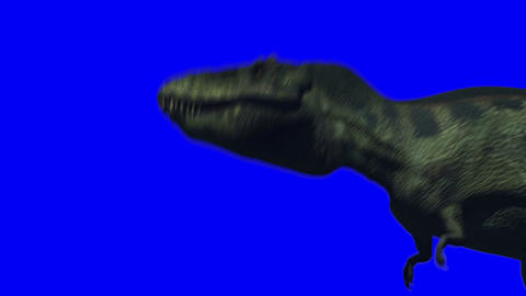 Tyrannosaurus Roars (Blue Screen) Animation