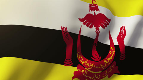 Brunei flag waving in the wind. Looping sun rises style. Animation loop Animation