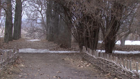 Alley. Snow-Fall. Picturesque Landscape Camera Footage