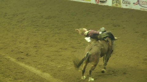 Rodeo Rider Trying To Stay on Horse Footage