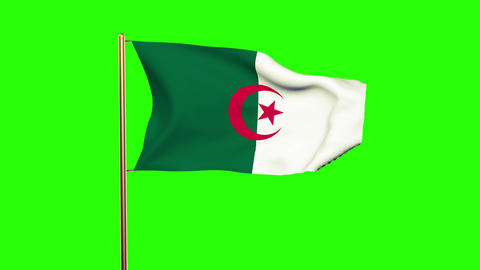 Algeria flag waving in the wind. Green screen, alpha matte. Loopable animation Animation
