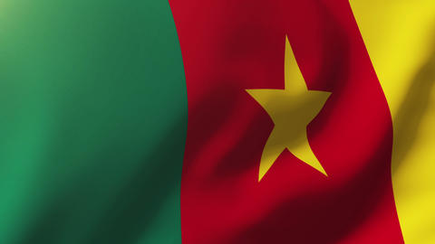 Cameroon flag waving in the wind. Looping sun rises style. Animation loop Animation
