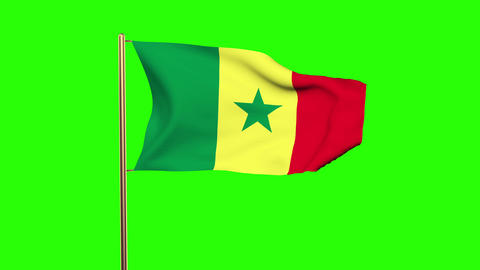 Senegal flag waving in the wind. Green screen, alpha matte. Loopable animation Animation