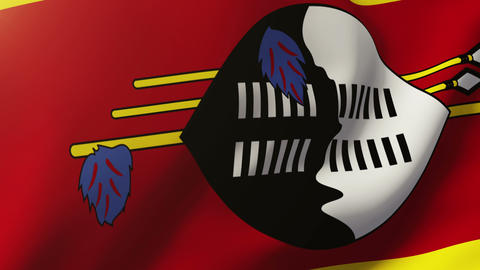 Swaziland flag waving in the wind. Looping sun rises style. Animation loop Animation
