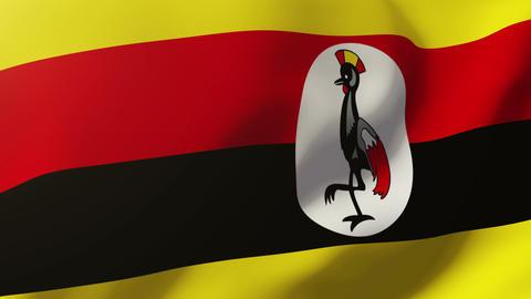 Uganda flag waving in the wind. Looping sun rises style. Animation loop Animation