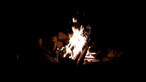 (Perfect Loop) Campfire Night Shot Footage