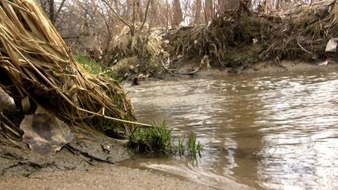 (Perfect Loop) Sandy Shallow Barren Creek Shot Aside stock footage