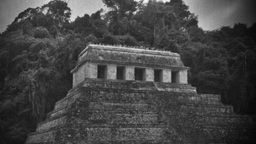 palenque jungle mayan ruins mexico Footage