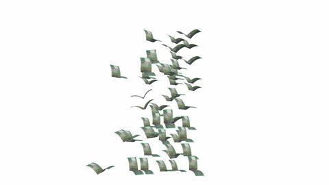 100 dollars flying Stock Video Footage