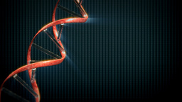 DNA string with X-Ray background,seamless loop Stock Video Footage