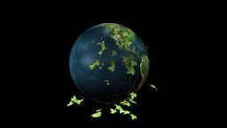 Earth Rotating and Ivy with Alpha Stock Video Footage