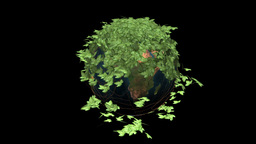 Earth Rotating and Ivy with Alpha Animation