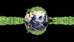 Earth globe and ivy growing to surround the planet,Alpha included Animation