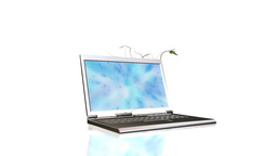 Open laptop with blue particles flying on the display and ivy growing Animation
