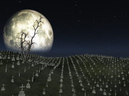 Graveyard with full moon behind,ground fog and tree flowing in the wind Animation