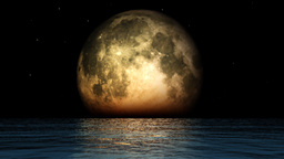 Ocean and moon phases with twinkling stars Animation