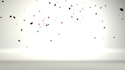 Rose petals in a white room falling on the floor,nice... Stock Video Footage