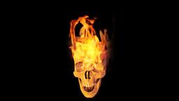 Skull on fire Stock Video Footage