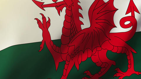 Wales flag waving in the wind. Looping sun rises style. Animation loop Animation