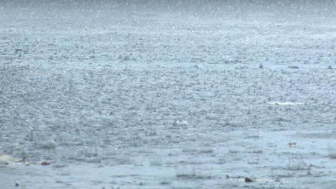 Rain Drops Splash In Torrential Storm Footage
