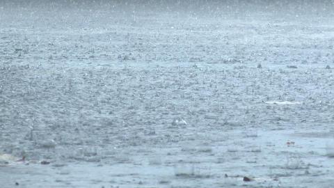 Rain Drops Splash In Torrential Storm Footage