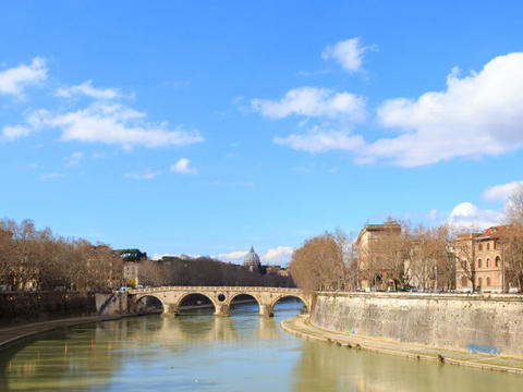 Bridge on the River Tiber systems. Rome, Italy. TimeLapse. 640x480 Footage