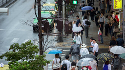 rain tokyo pedestrian japan people city umbrella Footage