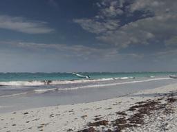 tulum paradise beach mexico caribbean Footage