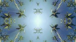 underwater pool palm trees Footage