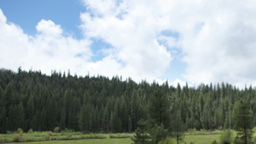 yosemite national park, california, usa Footage