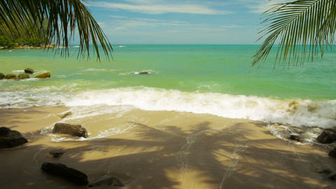 Surf. beach. palm trees and their shadows. Thailand. Phuket Island Footage