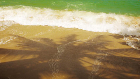 Deserted beach with the shadows of palm trees. Thailand. Phuket Island Footage