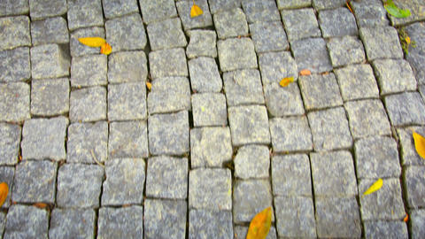 Following A Stone Pathway At Ayutthaya Thailand stock footage