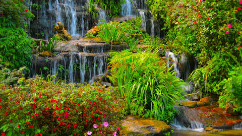 Beautifully Landscaped Waterfall in Chiang Mai. Thailand Footage