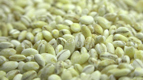 High Resolution Macro of Dry Pearl Barley Grain. Motorized Dolly Shot. 4K UltraH Footage