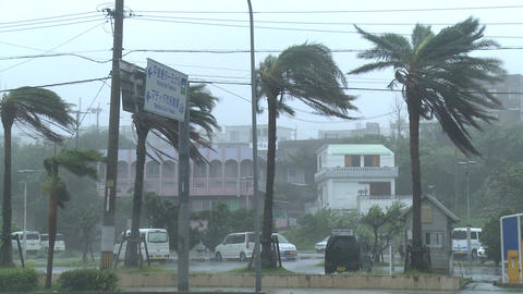 Hurricane Nears City Strong Winds Footage
