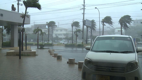 Hurricane Strong Winds Lash City Footage