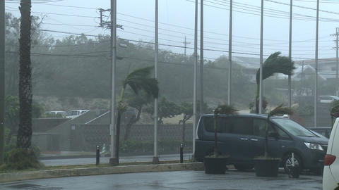 Hurricane Extreme Strong Winds Lash City Footage