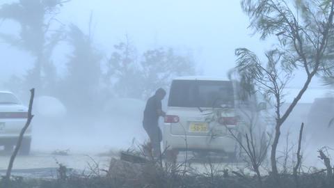 Violent Hurricane Eyewall Winds Lash Man On Street Footage