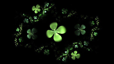 Green Four Leaf Clover On Black Animation Animation