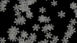 Snow Flakes Falling With Alpha Channel stock footage