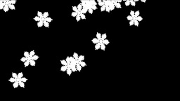 Snow flakes falling with Alpha Channel Stock Video Footage