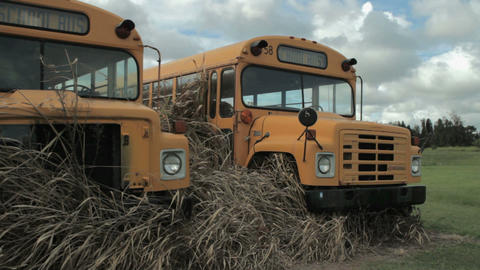 two retired school bus Stock Video Footage