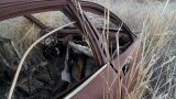 Abandoned Car Footage